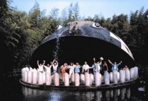 walvis Pinokkio park