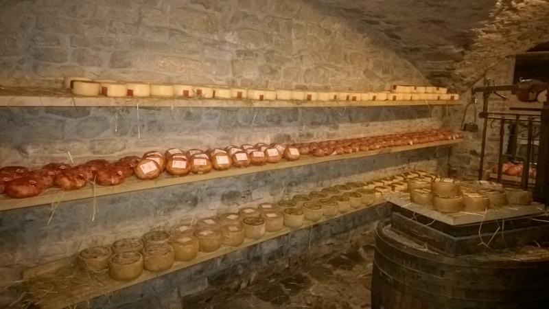rijpende kazen in de 13de eeuwse kelder