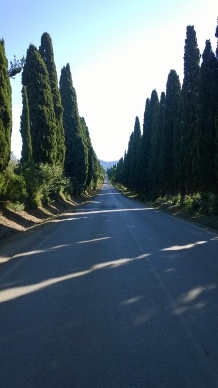 Viale dei Cipressi (450x800)