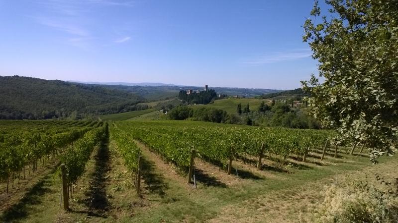 Toscaanse platteland in de herfst