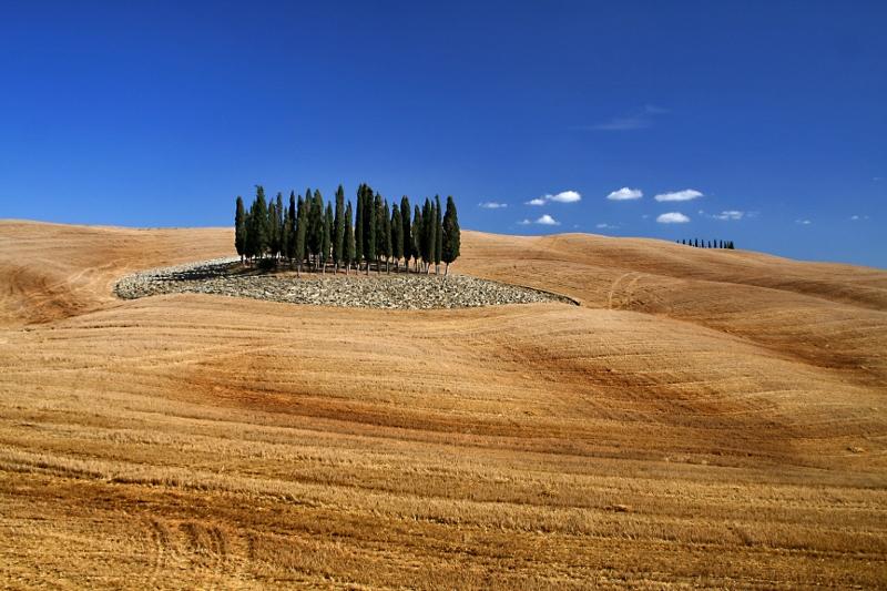 Cipressen - foto door Pisano68