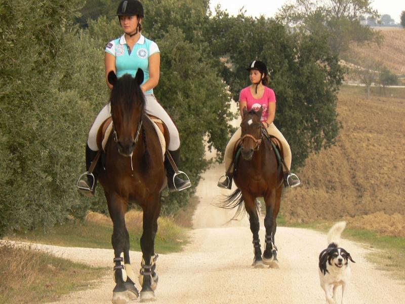 trektocht per paard Toscane 02 (800x600)
