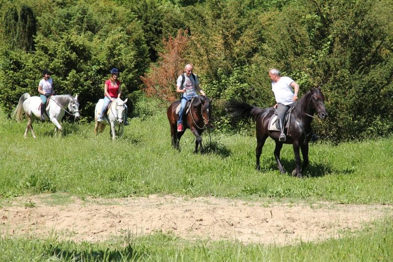 trektocht per paard Toscane (800x534)