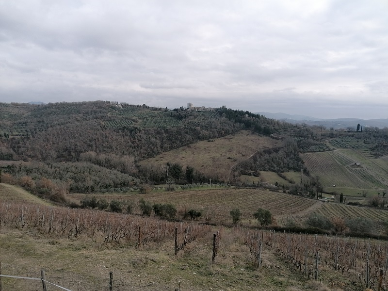 de prachtige omgeving rondom Radda in Chianti