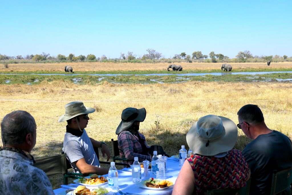All-Day Safari experience