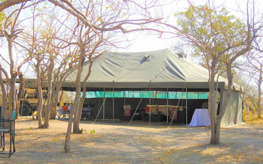 Main Tent with Brave Africa