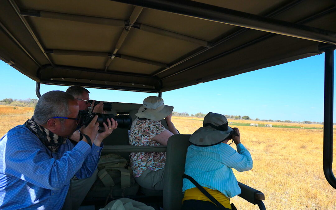 Safari Guiding Importance with Brave Africa