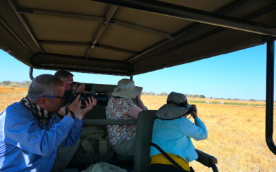 The Importance of Safari Guiding: 9 Reasons Bush Guides are Essential