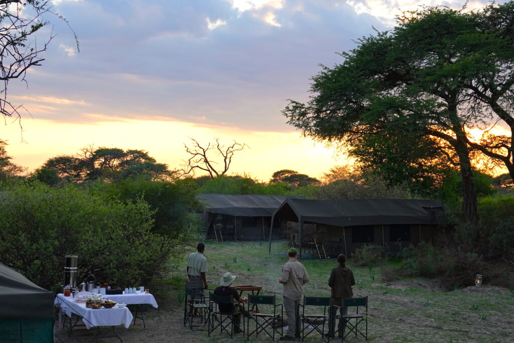 Botswana safari camp at sunrise