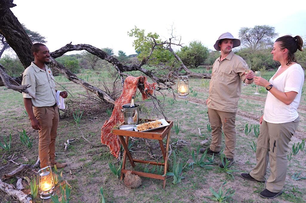 Brave Africa Honeymoon Experience