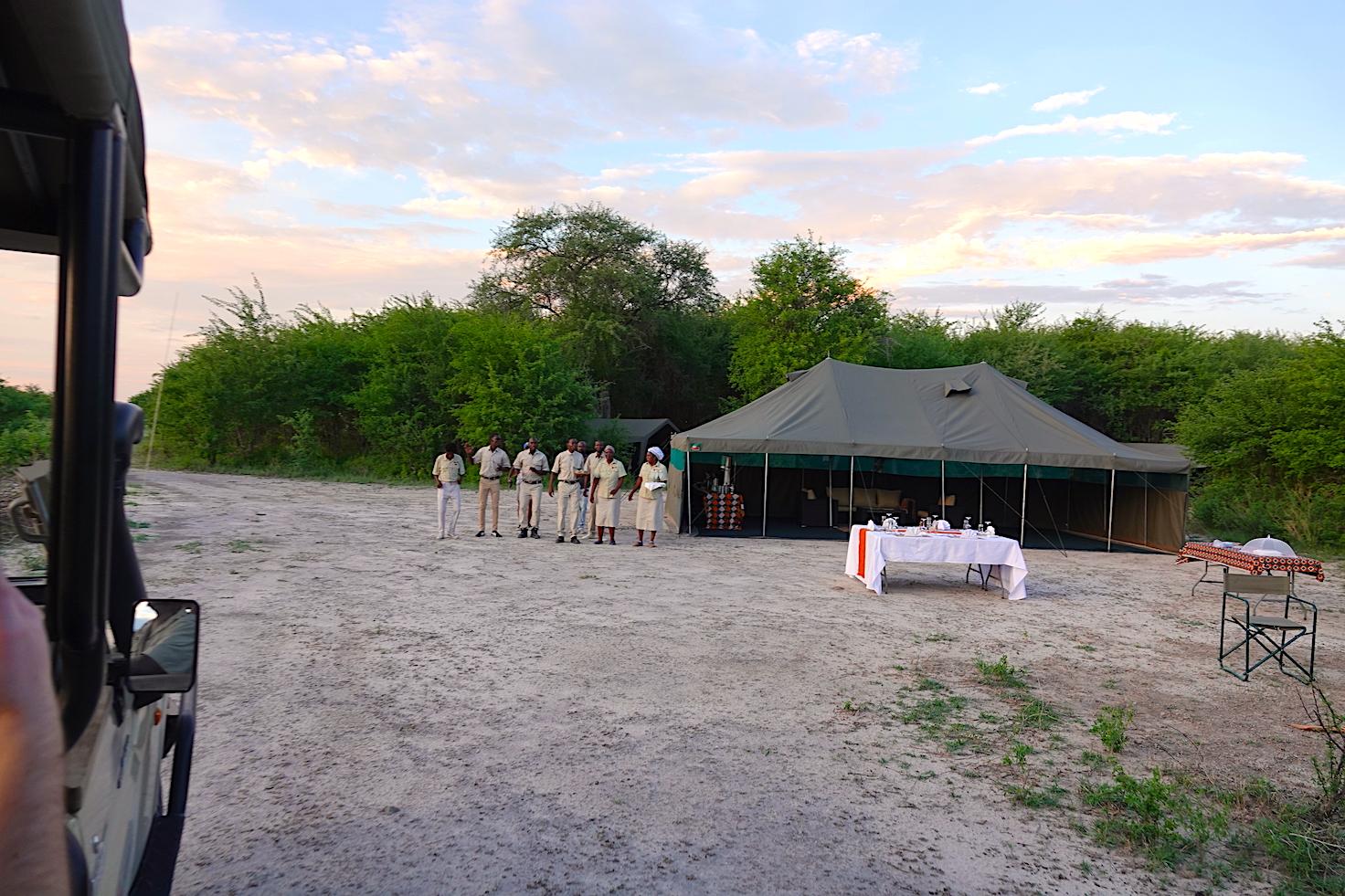 Brave Africa Camp