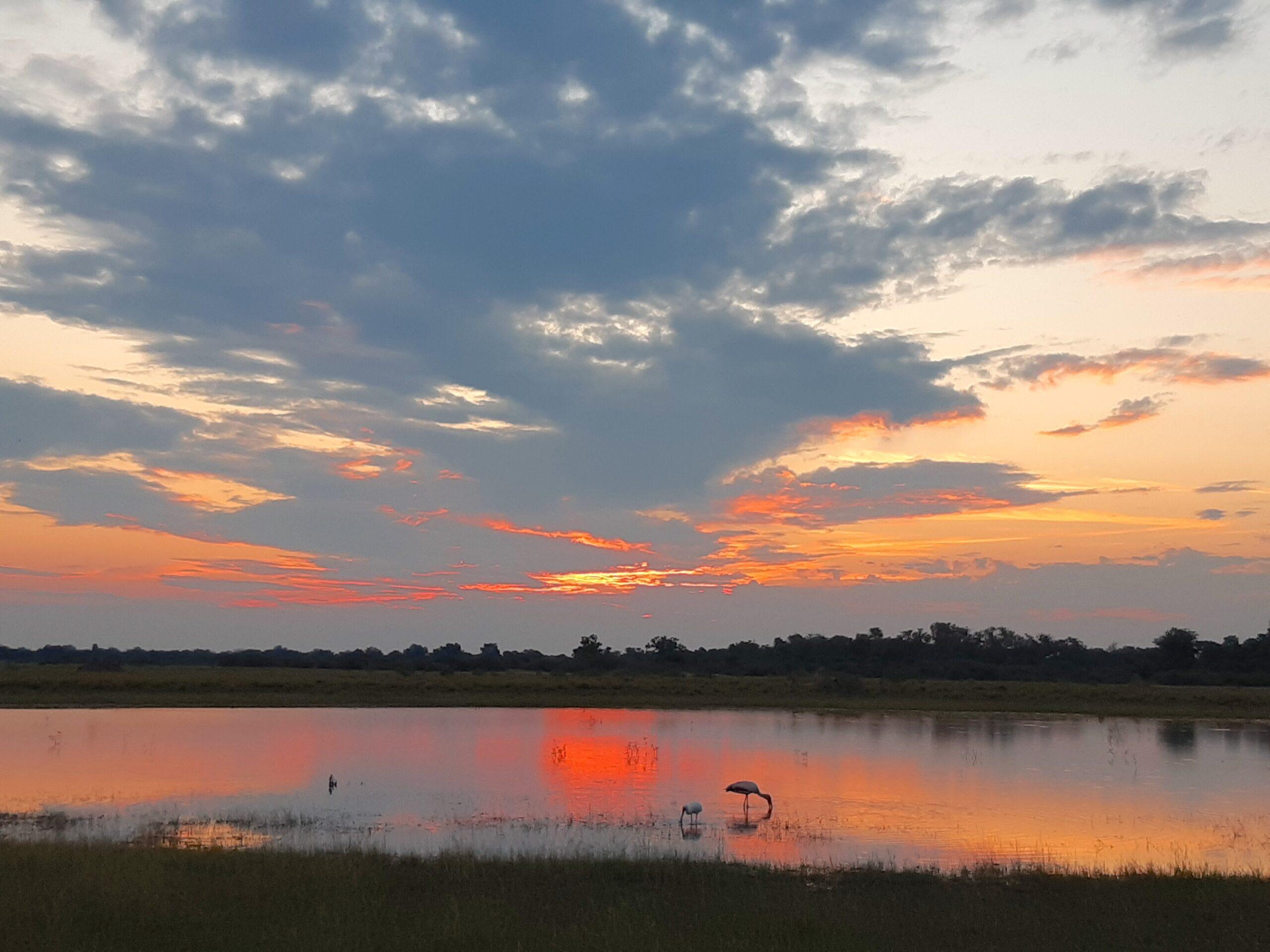 Okavango Delta flooding