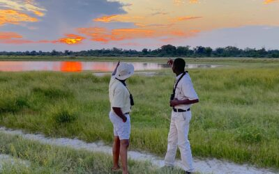 How to Plan Your African Safari After Coronavirus