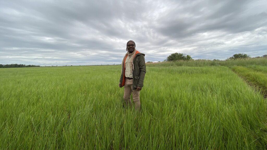 Tabona Wina in an Open Field on Safari