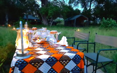 3 Incredible African Safari Holidays in Botswana