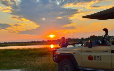 8 Unique African Safari Activities You Must Do!