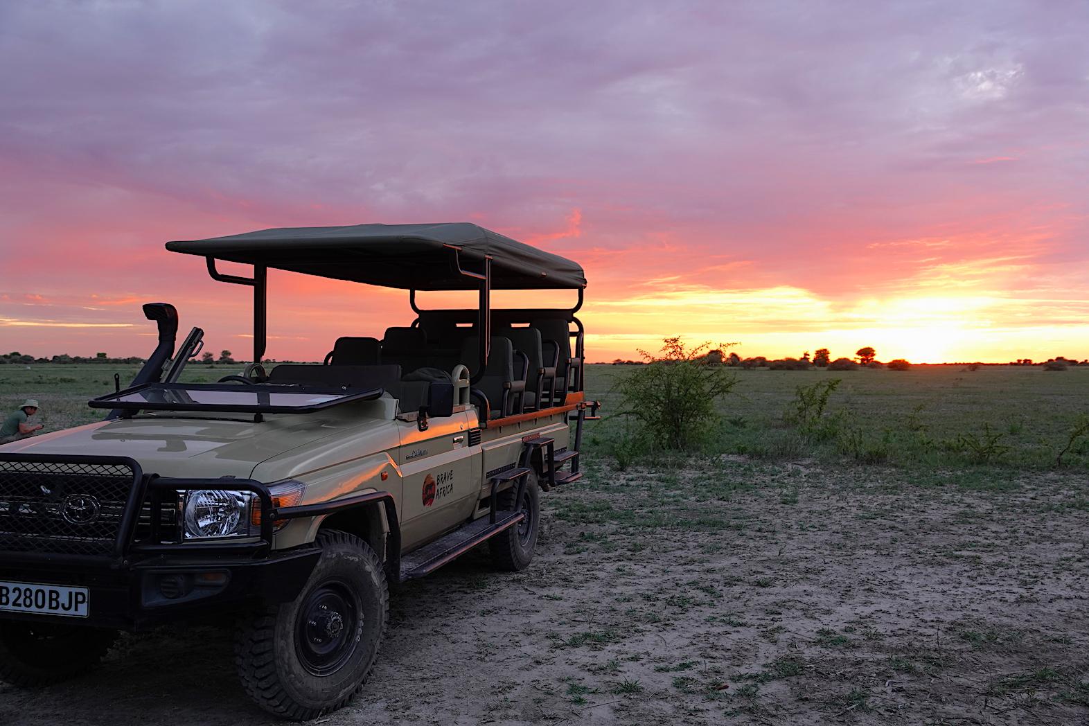 Sunrise Safari Game Drive