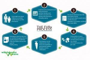 FVRx-Process1-1024x682