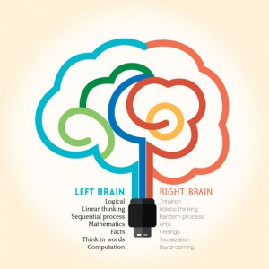 Left right brain function creative concept illustration