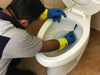 Hygenex specialist cleaning toilet bowl
