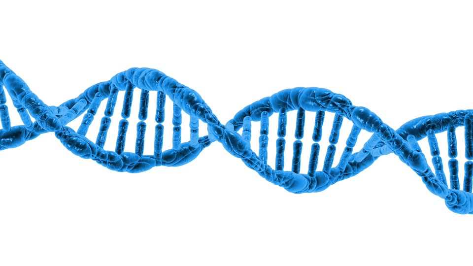 Sending DNA To Ancestry Services Could Cost Your Insurance