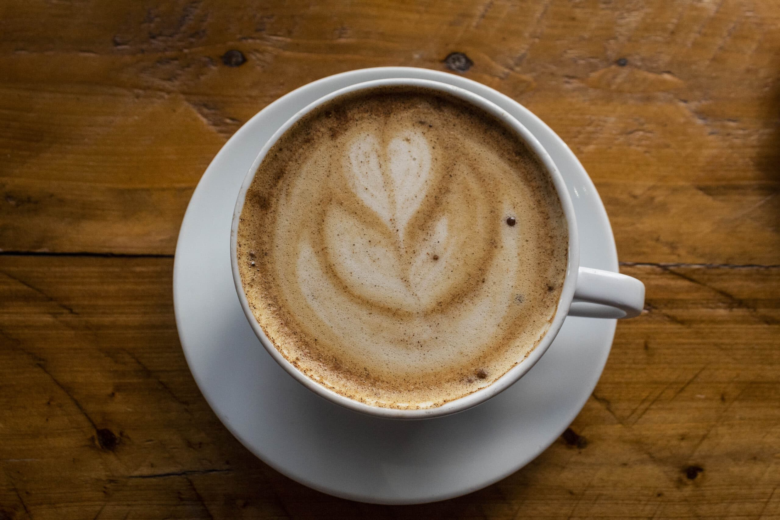 BEST Local Coffee Shops in Tampa, Florida