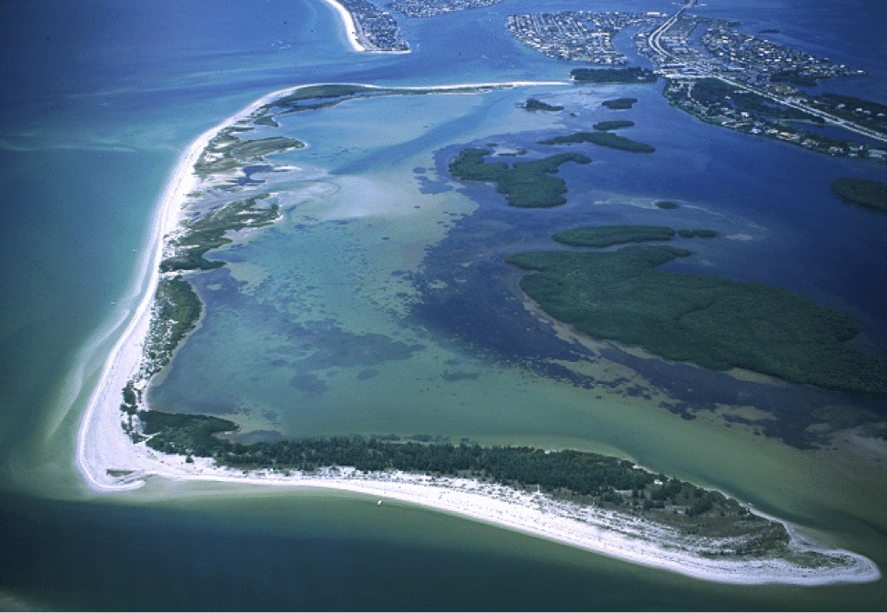 Shell Key Preserve – A Natural Florida Gem