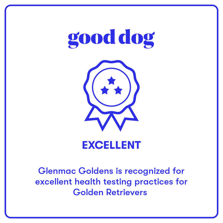 Good Dog Badge of Excellence