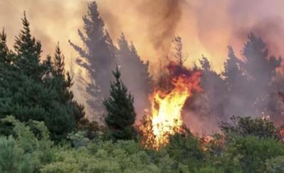 Fuego en Patagonia, Argentina
