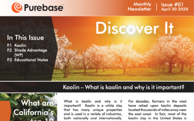 Purebase Releases First Newsletter called Discover It