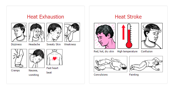 heat stress OSHA diagram