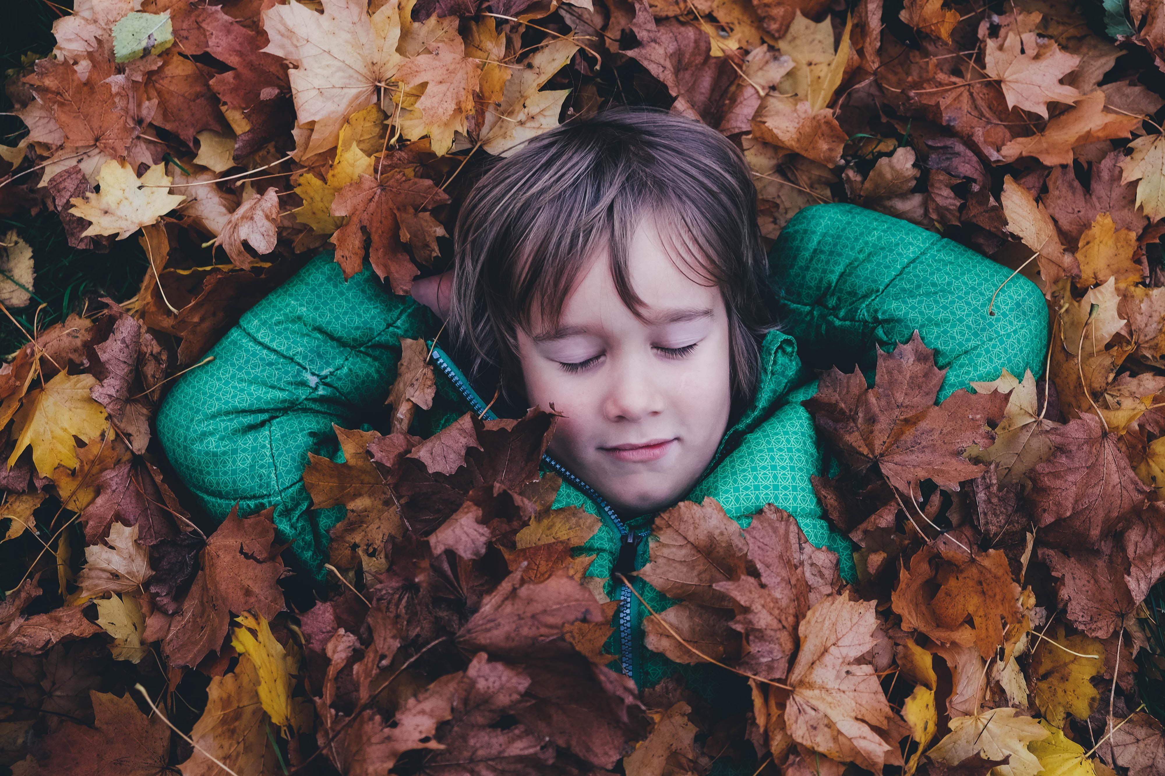 Daylight Savings Time – Fall Back