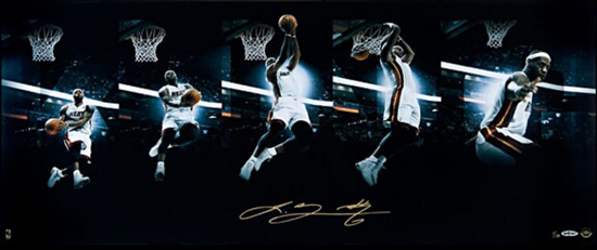 Art of the Dunk LeBron James