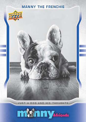2015-Upper-Deck-Manny-the-Frenchie-Trading-Card-National-Sports-Collectors-Convention-1