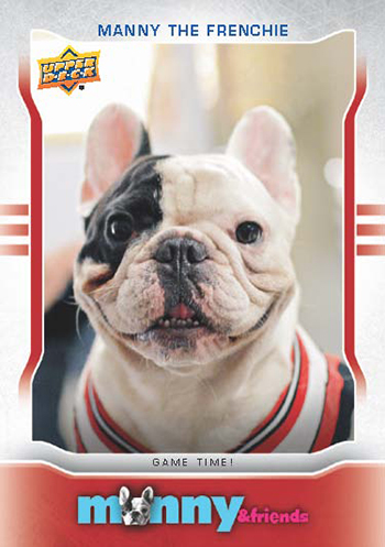Upper Deck Manny the Frenchie Trading Card