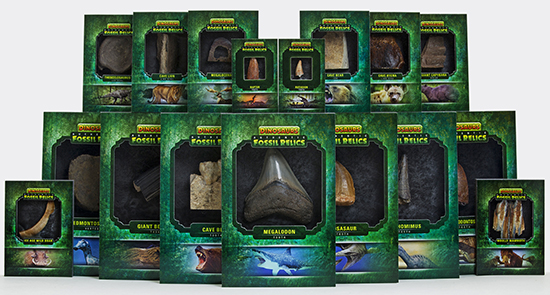 2015-Upper-Deck-Dinosaurs-Fossil-Relic-Cards