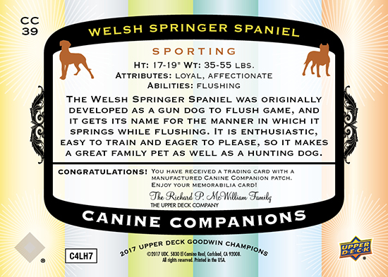 2017-Goodwin-Champions-Canine-Companions-CC39-Welsh-Springer-Spaniel-Back