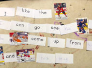 Single Mother of Two Using Hockey Cards to Teach Her Boys at Home Gets a Special Surprise from Upper Deck