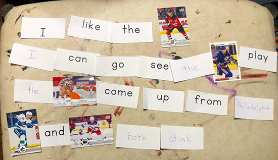 upper deck nhl trading cards at home learning home schooling teach kids